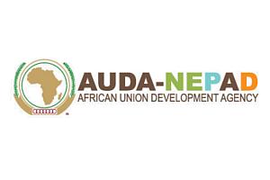AUDA NEPAD Logo